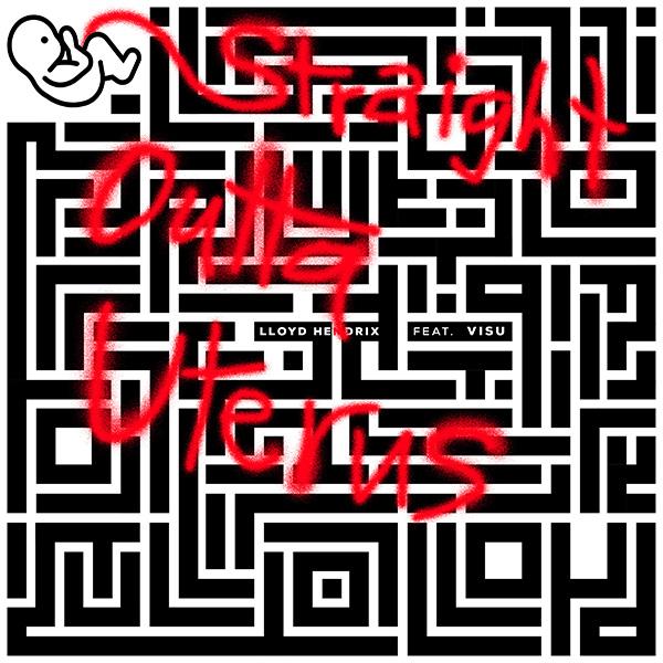 maze cover